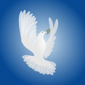 1369855_white_dove_spirit_of_peace